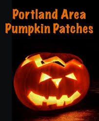 Pumpkin Patch Portland by Pumpkin Patches 2017 Real Estate Marketing Specialist