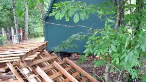 Wolves In My Backyard!!!!!! - YouTube My Backyard Garden Nation Of Islam Ministry Agriculture Super Groovy Delicious Bite Big Lizard In My Back Yard Erosion Under Soil Backyard Ask An Expert I Think Found Magic Mushrooms Wot Do This Video Is Hella Clickbait Youtube Dinosaur Storyboard By 100142802 Holes In The Best Home Design Ideas Cottage Months Ive Been Creating More Garden Rooms Cat Frances Aggarwal Backyards Terrific Rocks And Minerals Tree Growing Started Fruiting Can Someone Id