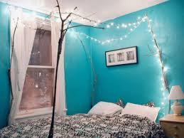 beautiful bedroom with turquoise walls with unique ls canopy