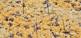 blechkuchen rezepte einfache ideen mit obst oder schokolade