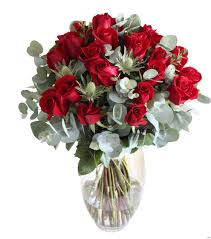35 Inspirational Red White Rose