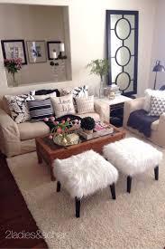 Cheap Living Room Decorating Ideas Pinterest by Decorations Cheap Apartment Decorating Ideas For Guys Apartment