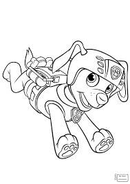 Coloring Pages Cartoons Paw Patrol Ryders Birthday Page Ryder