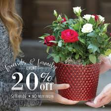 50% Off - Jackson & Perkins Coupons, Promo & Discount Codes ... 20 Off Flying Flowers Coupons Promo Discount Codes Wethriftcom Daisy Me Rollin By Bloomnation In Ipdence Oh Nikkis 21 Blooms Succulents Box Brighton Mi Art In Bloom Lavender Passion Bouquet Peabody Ma Evans Home For The Holidays By Dallas Tx All Occasions Florist Take Away Daytona Beach Fl Zahns More My Garden Carnival Dear Mom Avas Florist Coupon Code 3ds Xl Bundle Target