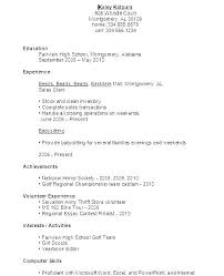 Resume Template For First Job Example Volunteer Free Templates 1st Line Support Cv