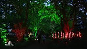 hallo niedersachsen erleuchtet illuminierte gärten in bad zwischenahn ard mediathek