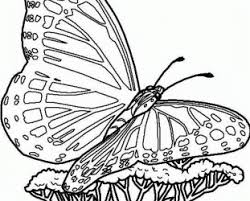How To Print Coloring Pages From Bing