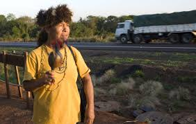 100 Truck Nuts Illegal Brazilian Indians Survival International