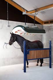 407 Best Barns Images On Pinterest   Dream Barn, Horse Barns And ... Defeat The Enemy Fly Control Options For Horse And Barn Music Calms Horses Emotional State The 1 Resource Breyer Crazy In At Schneider Saddlery Horsedvm Controlling Populations Around Oftforgotten Bot Equine Dry Lot Shelter Size Recommendations Successful Boarding Your Expert Advice On Horse 407 Best Barns Images Pinterest Dream Barn Barns A Management Necessity Owners Beat Barnsour Blues Care Predator Wasps Farm Boost Flycontrol Strategies Howto English Riders