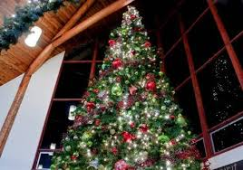 This Dramatic Image Is Of A Very Large Indoor Christmas Tree Stock Photo Picture And Royalty Free 10836184