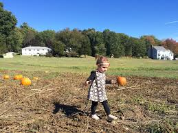 Great Pumpkin Patch Frederick Md by The Scurlock Scene October 2015