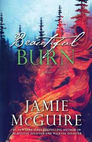 Beautiful Burn Maddox Brothers Series 4