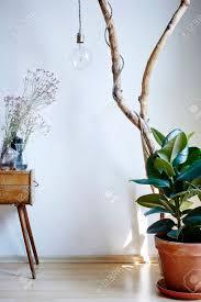 lebendige sonnige atmosphäre wohnzimmer dekoration pflanzen schrank und ast le