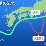 平成16年台風第21号, 日本