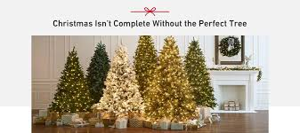 Shop Christmas Trees At Lowes