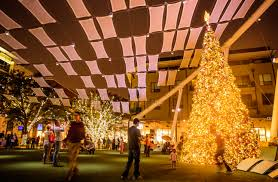 Dillards Christmas Tree Farm by Partnered Archives 365 Things To Do In Austin Tx