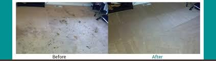Carpet Cleaning Vancouver WA & Camas | 700+ 5 Star Reviews