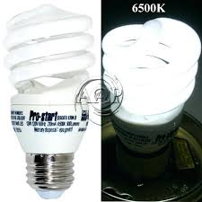 aquarium light bulb standard medium base power compact aquarium