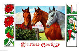 Leanin Tree Horse Christmas Cards by Horses Merch U0026 Memorabilia Animals Collectibles