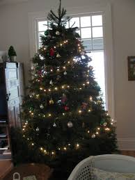 Griswold Christmas Tree Farm by Finding A Christmas Tree Tradition Salem Is