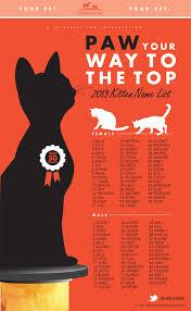 orange cat names most popular kitten names 2013