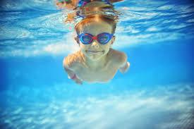 Backyard Paradise Pools gogo papa
