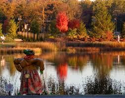 Morton Pumpkin Festival Hours by The Morton Arboretum Lisle Ill Chicagoparent Com