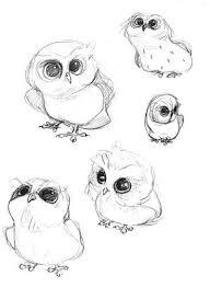 How To Draw A Cartoon Owl