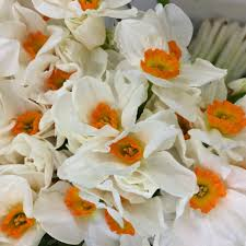 Ftd Flowers Coupon 50 Off / Freecharge Coupon Code November 2018 Top Sales And Coupons For Mothers Day 2019 Winner Sportsbook Coupon Code Online Coupons Uk Norman Love Papa John Coupon Flower Shoppingcom Bed Bath Beyond Total Spirit Cheerleading Ftd September 2018 Second Hand Car Deals With Free Sears Codes 2016 Kanita Hot Springs Oregon Juno 20 Off Pacsun Promo Codes Deals Groupon Celebrate Mom Discounts Freebies Ftd 50 Discount Off December Company