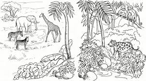 Printable Amazon Rainforest Coloring Pages