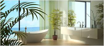 mit pflanzen das bad in eine grüne oase verwandeln i