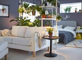 plante verte dans une chambre à coucher étagères stolmen séparant la chambre à coucher et le séjour