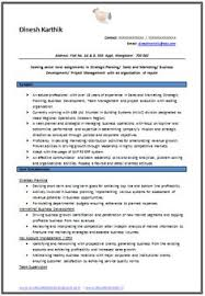 Professional Curriculum Vitae Resume Template For All Job Seekers Sample Example Of Beautiful Excellent