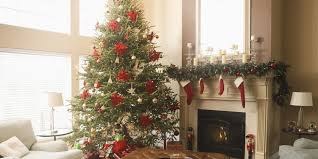 Christmas Trees Types Uk by Real Christmas Trees Direct Freshly Cut Christmas Trees