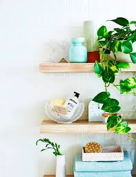 Fake Plants For The Bathroom by Bathroom Design Awesome Indoor Plants Bathroom Plants No