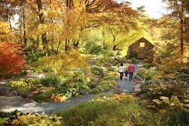 16 Beautiful Public Gardens to Visit in Fall Best Public Gardens