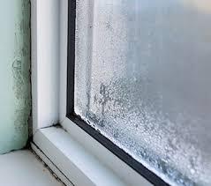nasse fenster im winter kondenswasser führt zu schimmel