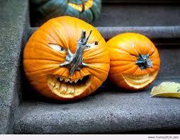 Cute Halloween Carved Pumpkins by 188 Best Jack O U0027 Lantern Ideas Images On Pinterest Halloween