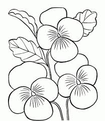 Ipad Coloring Pages For Kids Flowers New At Flower Page Printable Sheets