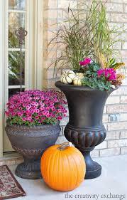 Fertilizer For Pumpkins Uk by 740 Best Container Gardening Images On Pinterest Gardening