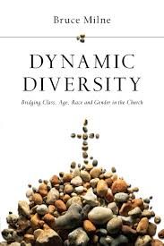 Dynamic Diversity Bridging Class Age Race And Gender In The Church