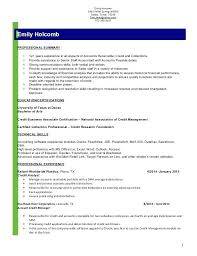 Credit Analyst Resume Sample Hr Functional Consultant Examples Business Quantitative