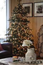 Nordmann Fir Christmas Tree Nj by Christmas Balsam Hill Coupons Christmas Trees Store Locator Fir