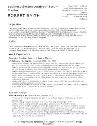 Business System Analyst Resume Objective Samples Best Systems Example