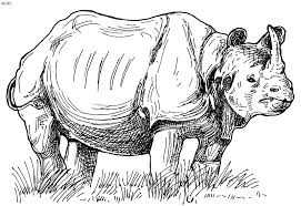 Rhinoceros Coloring Page Kids Website For Parents