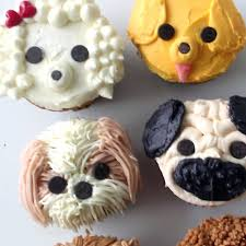 Cool Cupcakes Best Decorating Ideas On Birthday Cupcake Designs And Cashmere Bedding