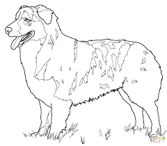 Click Shepherd Coloring Pages Good Bible Jesus Is Our Sunday Page Full Size