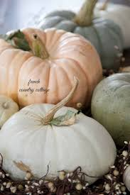 Gold Pumpkin Carriage Centerpiece by 196 Best White Pumpkins Images On Pinterest White Pumpkins Fall