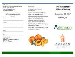 Pumpkin Patch Alabama Clanton by Afvga News