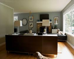 Accent Wall Color Combinations With Brown Furniture Blue Interior Family